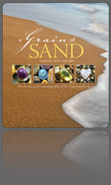 A grain of sand book gary greenberg